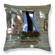 Window And Flowerbox Throw Pillow