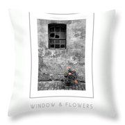 Window And Flowers Poster Throw Pillow