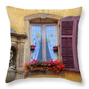 Window And Sculpture Throw Pillow