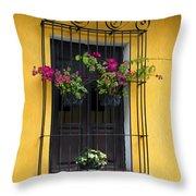 Window At Old Antigua Throw Pillow