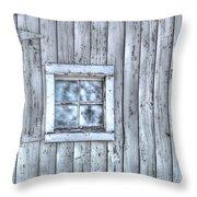 Window Throw Pillow by Juli Scalzi