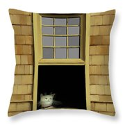 Window Cat    No. 2 Throw Pillow