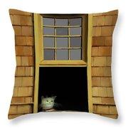 Window Cat    No.3 Throw Pillow