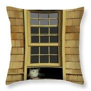 Window Cat    No.4 Throw Pillow