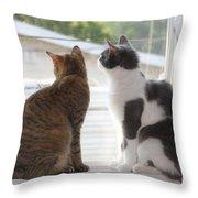 Window Cats Throw Pillow