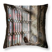 Window Decay Throw Pillow