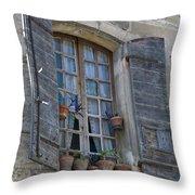 Window Decoration Throw Pillow