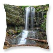 Window Falls Throw Pillow