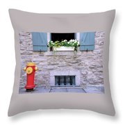 Window Flower Box 2 Throw Pillow