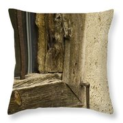 Window Frame Detail 2 Throw Pillow by Heiko Koehrer-Wagner
