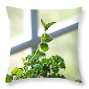 Window Herb Garden Throw Pillow