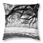 Window Oak - Bw Throw Pillow