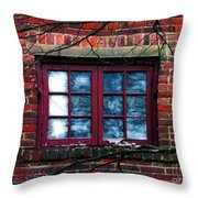Window Obscura Throw Pillow