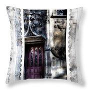 Window Of Renaissance Paris France Throw Pillow