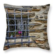 Window Of Vernazza Italy Dsc02629 Throw Pillow