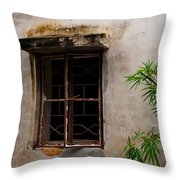 Window On Canvas Throw Pillow