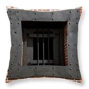 Window On Life Throw Pillow