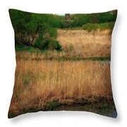 Window On The Waterfront Dezwaan Windmill Throw Pillow