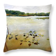 Window On The Waterfront Throw Pillow