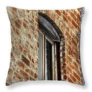 Window Pole 13153 Throw Pillow