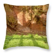 Window Reflections On Grass And Rock Face Throw Pillow