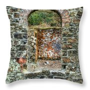 Window To A Bygone Heritage Throw Pillow