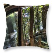 Window To A Window Via Tree Throw Pillow