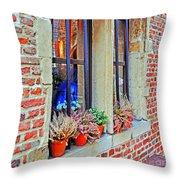 Window To Antwerp Throw Pillow