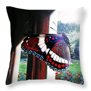 Window To My World Throw Pillow