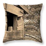 Window To Nowhere - Sepia Throw Pillow