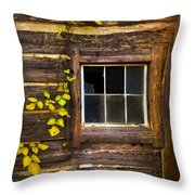 Window To The Soul Throw Pillow by Debra and Dave Vanderlaan