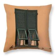Window With Shutter Throw Pillow
