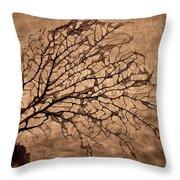 Windowpane Coral Throw Pillow