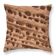 Windows In The Rock Throw Pillow