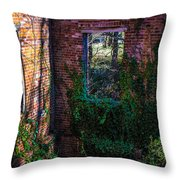Windows In Time Throw Pillow