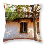 Windows Of Savannah Throw Pillow