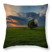 Windows Sd Throw Pillow