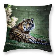 Windows To My Soul Throw Pillow