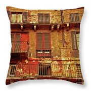 Windows With A View Throw Pillow
