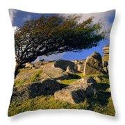 Windswept Hawthorn Tree Throw Pillow
