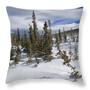 Windswept Terrain Throw Pillow