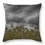 Windswept V3 Throw Pillow