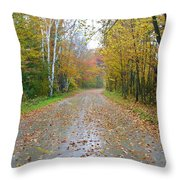 Windy And Rainy Fall Day Throw Pillow