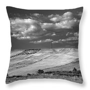 Windy At The Cereal Fields Throw Pillow