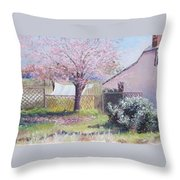 Windy Washing Day Throw Pillow