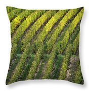 Wine Acreage In Germany Throw Pillow