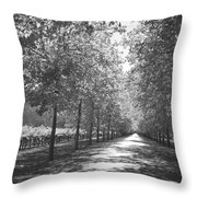 Wine Country Napa Black And White Throw Pillow by Suzanne Gaff