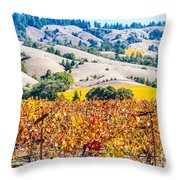 Wine Country Napa C.a. Throw Pillow