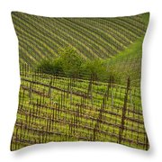 Wine Design Throw Pillow