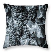Wine Grapes Bw Throw Pillow